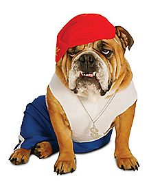 Rapper Dog Costume