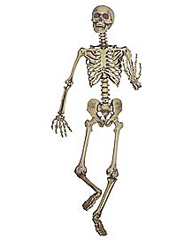 5 ft Hanging Skeleton Decoration - Decorations