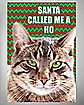 Santa Called Me a Ho Christmas Card