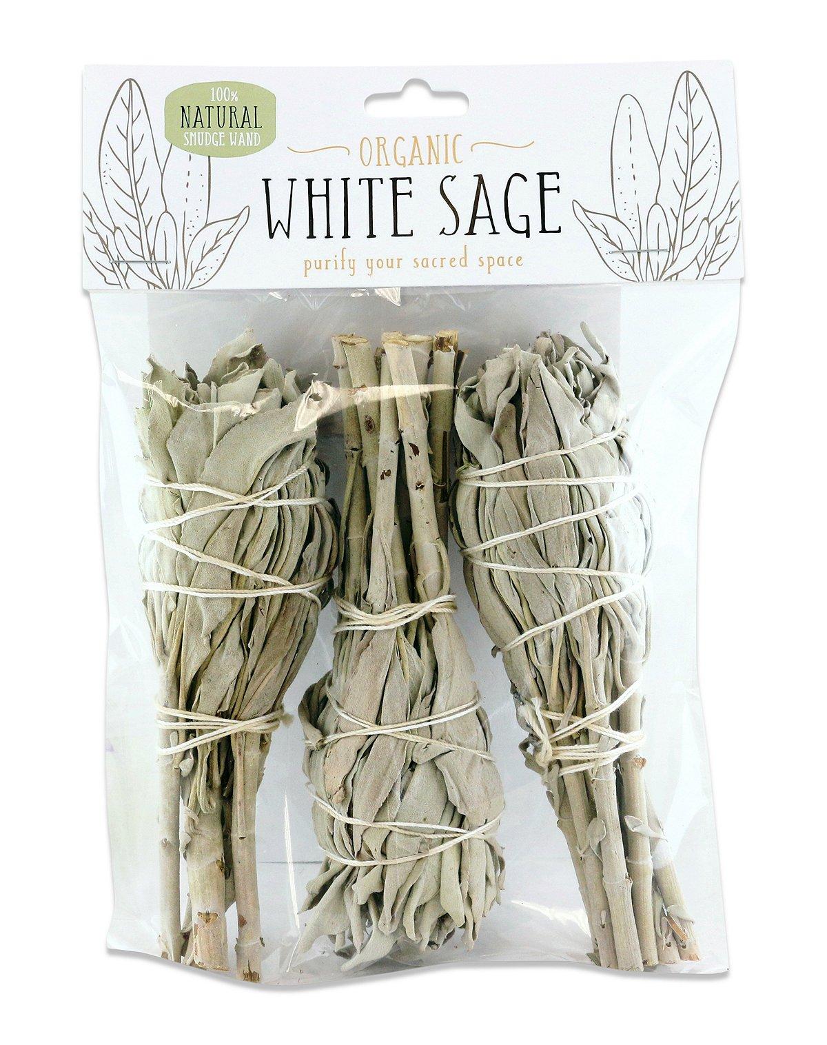 Mini white sage