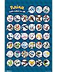 Group Chart Pokemon Poster