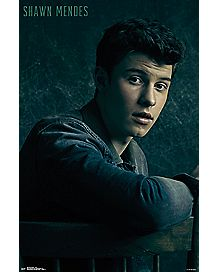 Shawn Mendes Poster