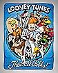 Group Looney Tunes Blanket