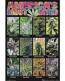 Americas Most Wanted Weed Poster