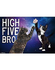High 5 Kittens Poster