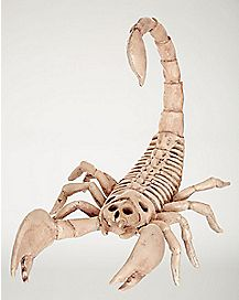 9 in Mini Skeleton Scorpion - Decorations