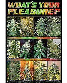 What's Your Pleasure Poster