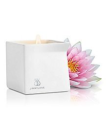 Afterglow Natural Massage Oil Candle Pink Lotus