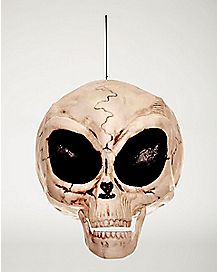 6 Inch Alien Skull – Decorations