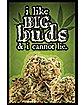 Like Big Buds Poster