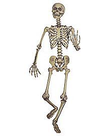 5 ft Hanging Skeleton Decoration - Decorations