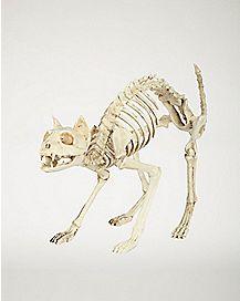 18 in Skeleton Cat - Decorations