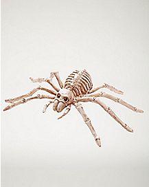 8 in Mini Skeleton Spider - Decorations