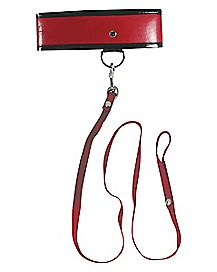 Red Leash and Collar
