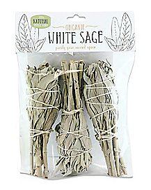 Mini Sage - 3 Pack