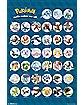 Group Chart Pokemon Poster