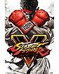 Street Fighter V Poster