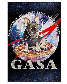 GASA Poster
