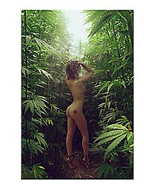 Naked Girl Pot Poster