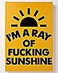 I'm A Ray of Fucking Sunshine Wall Art