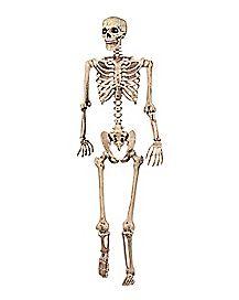 5 ft Pose 'N' Stay Skeleton - Decorations