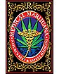 Medical Marijuana Weed Blacklight Poster