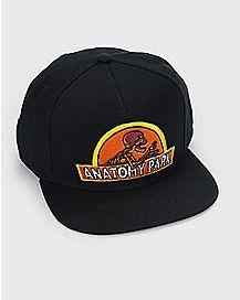 Anatomy Park Snapback Hat - Rick and Morty