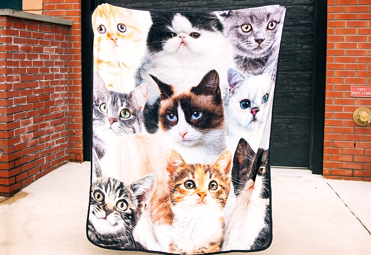 Shop Fleece Blankets