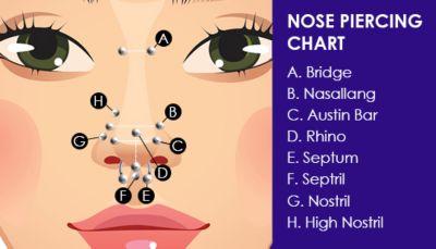 nose piercing chart
